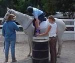 equestrian_01a